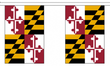 MARYLAND (U.S. STATE) BUNTING - 3 METRES 10 FLAGS